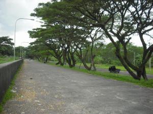 Akses Jalan depan waduk (gambar 2)