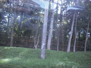 Salah satu sisi dari hutan kota di Palembang